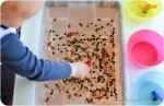 Birds: Games and Crafts for a Toddler