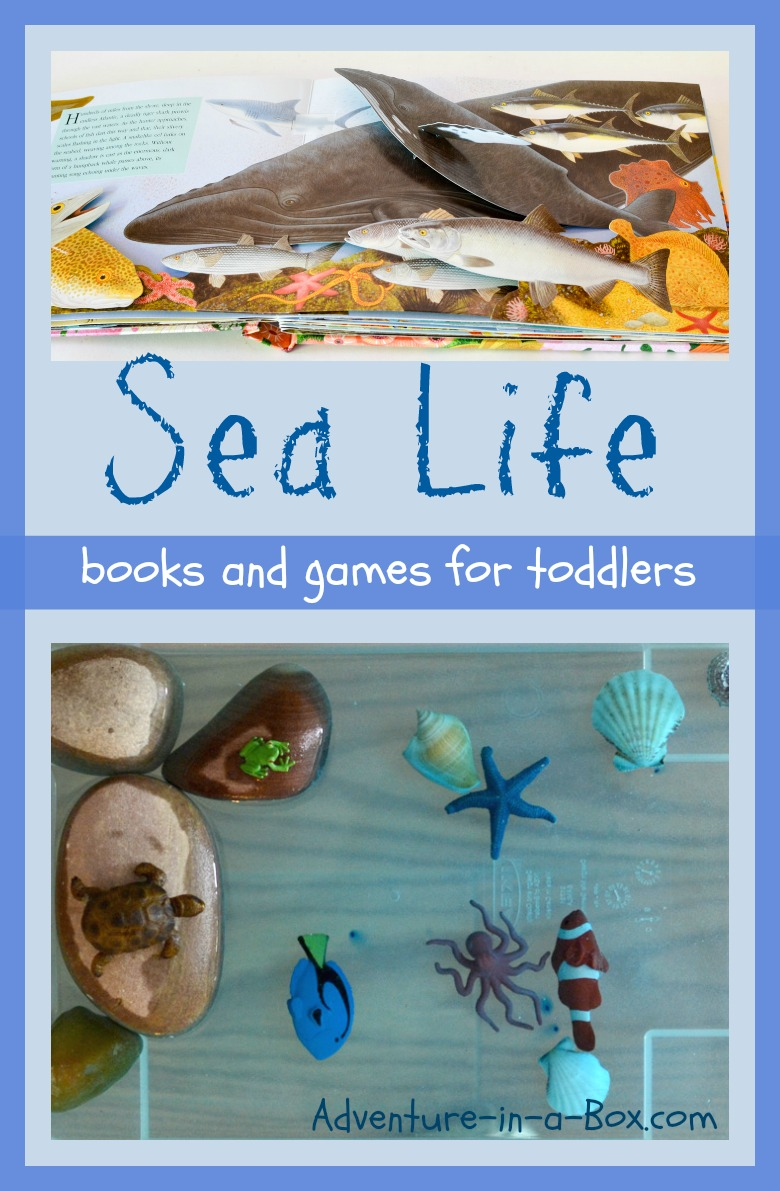 Sea Life: read books with toddlers to find out what is happening underwater, then turn your water table into an aquarium for sensory play