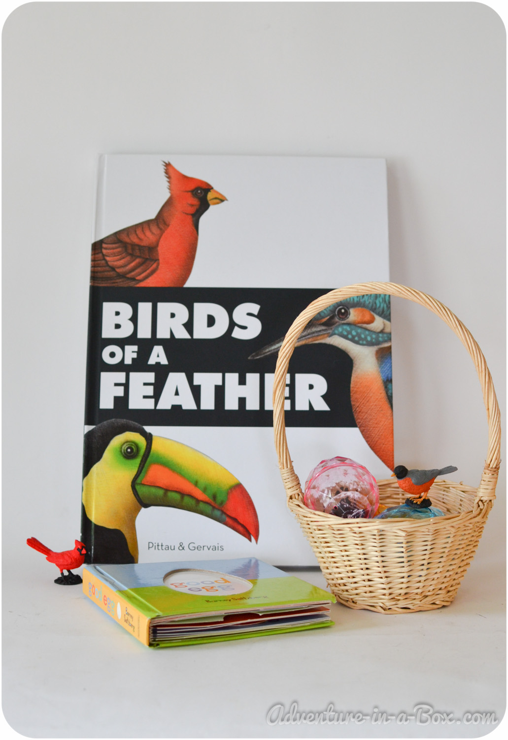 Our Favourite Books: Birds of a Feather