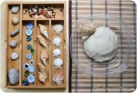 Seaside Play Dough: Making Fish, Snail and Lobster