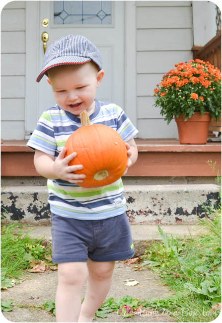 Autumn Sensory Bin: Harvesting Pumpkins for Our Play