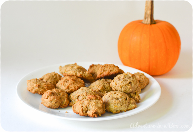 Halloween Party for Babies and Toddlers: Pumpkin Cookie Recipe