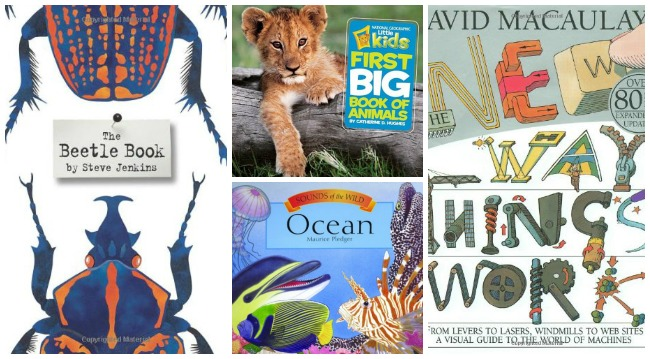 Picture Books that Make the Best Gifts: whether you are shopping for Christmas or Birthdays, these books will delight children