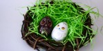 Owl Easter Eggs