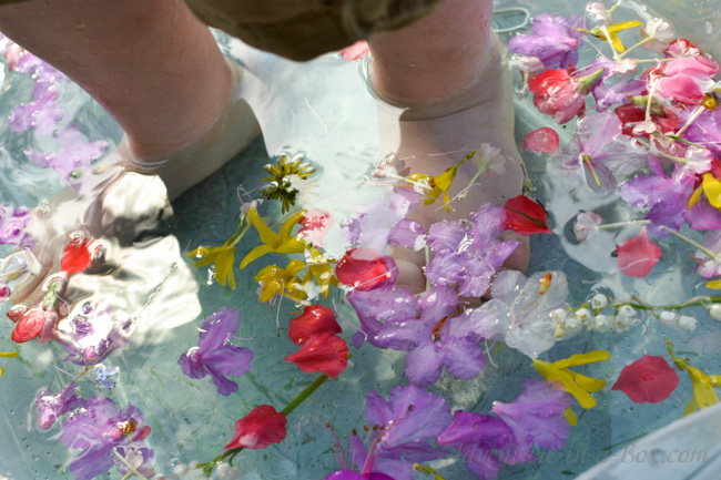 Summer Flower Sensory Bin for Kids: Collect flowers and make summer sensory soup, or jump right in the bin, splashing petals around! Simple activity to celebrate beauty of nature with kids.