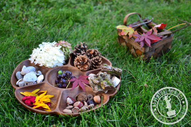 Nature Portraits: Gather leaves, acorns, chestnuts and late flowers for turning stumps into portraits!